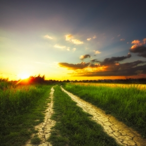 24876153 - path in the field and sunset. rural landscape