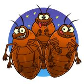 39342006 - bedbugs